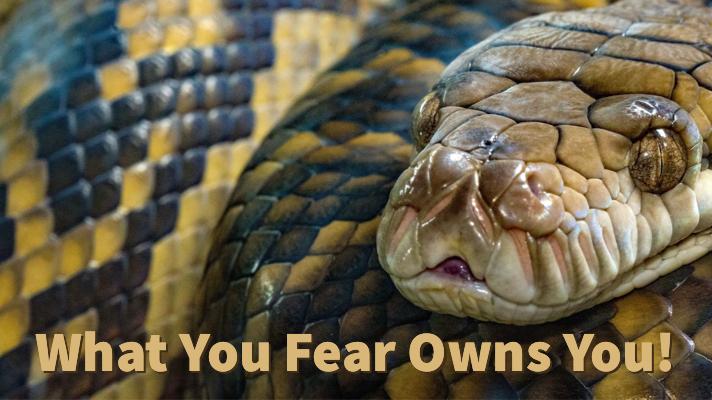 fearownsyou